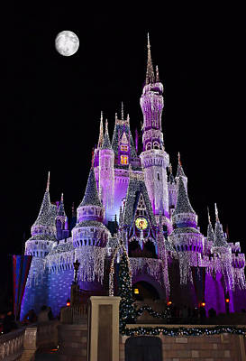 Cinderellas Castle At Night Poster