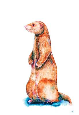 Poster featuring the painting Cinnamon Ferret by Zaira Dzhaubaeva