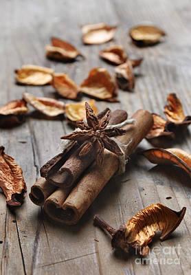 Cinnamon Poster by Jelena Jovanovic