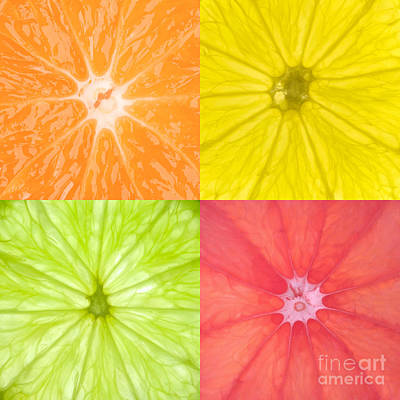 Citrus Fruits Poster by Richard Thomas