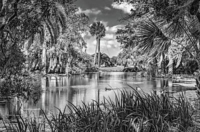 City Park Lagoon 3 Bw Poster