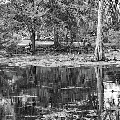 City Park Lagoon - Waterfowl Watching Bw Poster