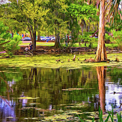 City Park Lagoon - Waterfowl Watching - Paint Poster