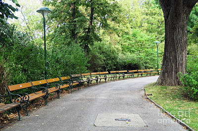 City Park, Vienna Poster