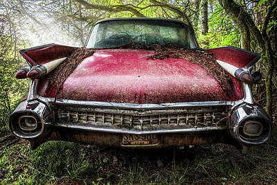 Classy Cadillac Poster by Debra and Dave Vanderlaan