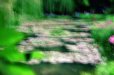 Poster featuring the photograph Claude Monets Water Garden Giverny 1 by Dubi Roman