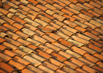 Clay Roof Tiles Poster by David Buffington