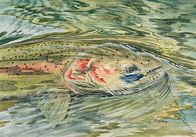Clearwater River Steelhead Poster by Link Jackson