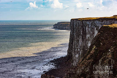 Poster featuring the photograph Cliffs Of Bempton by Anthony Baatz