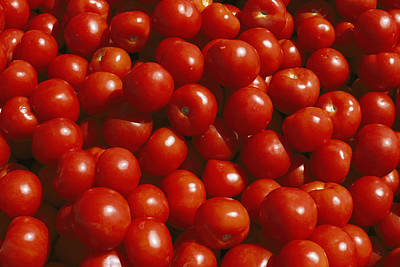 Close-up Of Tomatoes At A Market Poster by Todd Gipstein