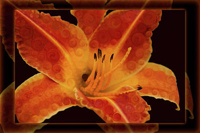 Closeup Wth A Vibrant Orange Lily Abstract Flower Poster