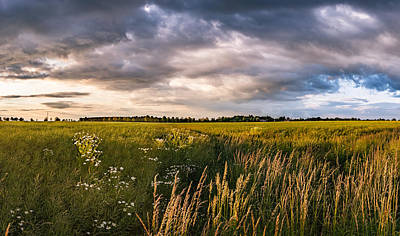 Poster featuring the photograph Clouds Over The Fields by Dmytro Korol