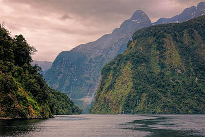 Cloudy Morning Doubtful Sound New Zealand Poster by Joan Carroll