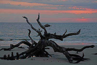 Cloudy Sunrise On Jekyll Island's Driftwood Beach Poster by Bruce Gourley