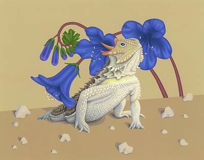 Coast Horned Lizard Poster by Nathan Marcy