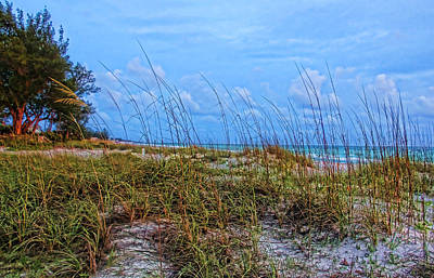 Coastal Anna Maria Island Poster by HH Photography of Florida