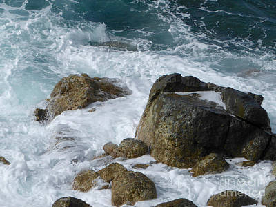 Coastal Rocks Trap Water Poster by Margaret Brooks