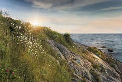 Coastline Newport Poster