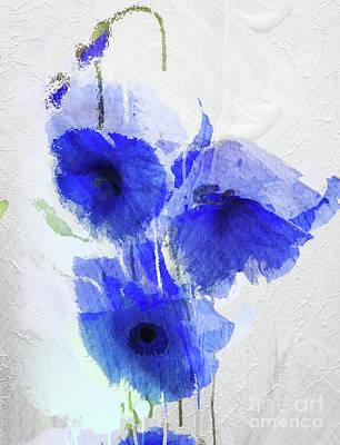 Cobalt Poppies Poster