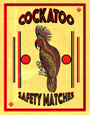 Cockatoo Safety Matches Poster by Carol Leigh