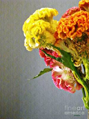 Poster featuring the photograph Cockscomb Bouquet 4 by Sarah Loft