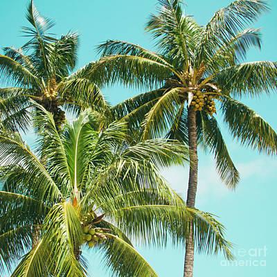 Poster featuring the photograph Coconut Palm Trees Sugar Beach Kihei Maui Hawaii by Sharon Mau