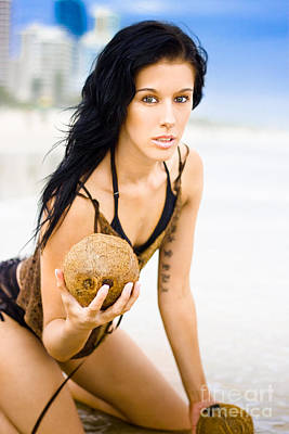 Coconuts In Paradise Poster by Jorgo Photography - Wall Art Gallery