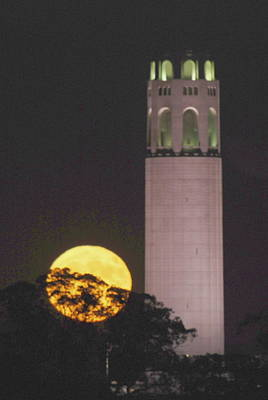 Coit Tower And Harvest Moon Poster