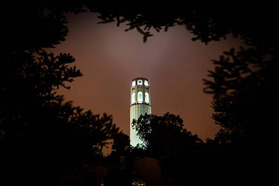 Coit Tower Through The Trees Poster