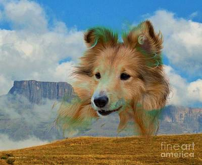 Collie And Landscape Poster by Annie Zeno