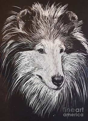 Collie Scratchboard Poster by Maxine Bochnia