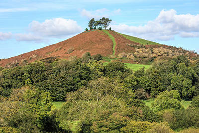 Colmer's Hill - England Poster