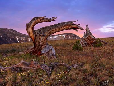 Coloful High Mountain Splendor Poster by Leland D Howard
