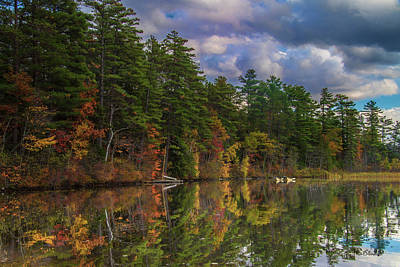 Color At Songo Pond Poster