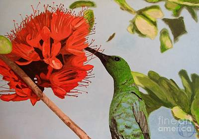 Color Canvas Oil Painting Of A Beautiful Hummingbird Drinking Nectar Poster