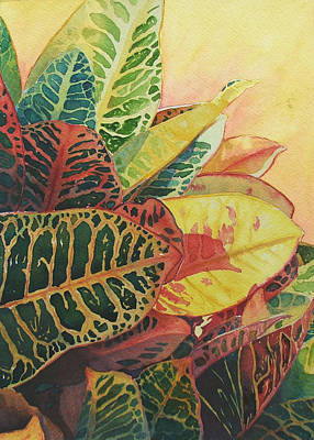 Poster featuring the painting Color Of Crotons by Judy Mercer