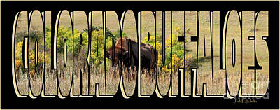 Colorado Buffaloes Name  9236 Poster