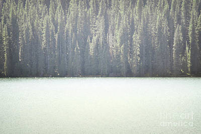Colorado Dreamy Woodland Lake Trees Poster by Andrea Hazel Ihlefeld