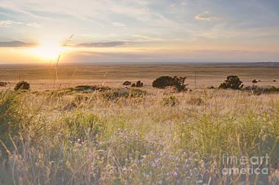 Colorado Field Sunset Landscape Poster by Andrea Hazel Ihlefeld