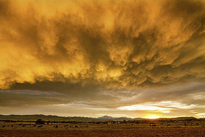Colorado Severe Thunderstorm Fury Sunset Poster by James BO Insogna