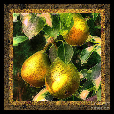 Colored Pears Poster by Sari Sauls
