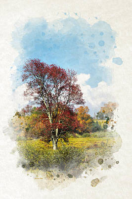 Colorful Autumn Tree Watercolor Art Poster