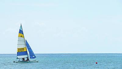 Colorful Catamaran 3 Delray Beach Florida Poster
