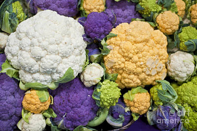 Colorful Cauliflower Poster