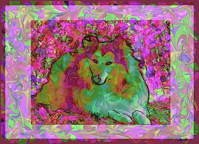 Colorful Collie Poster