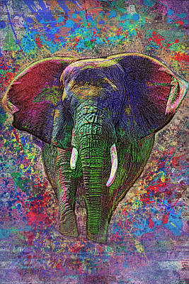 Colorful Elephant Poster by Jack Zulli