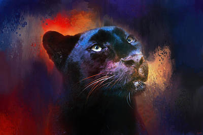 Colorful Expressions Black Leopard Poster