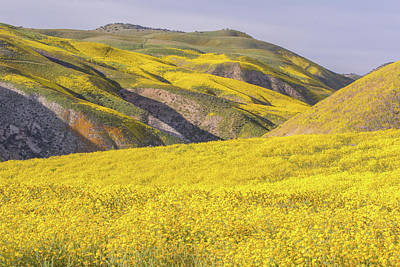 Poster featuring the photograph Colorful Hill And Golden Field by Marc Crumpler