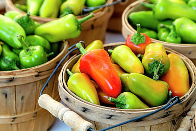 Colorful Peppers Poster by Teri Virbickis
