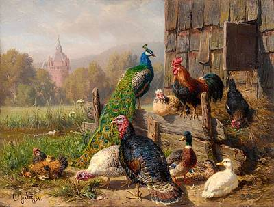 Colorful Poultry Poster by Mountain Dreams